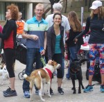 A Walkathon worth wagging for