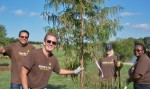 KIB and UPS volunteers replenish trees at Bird's Fort Trail